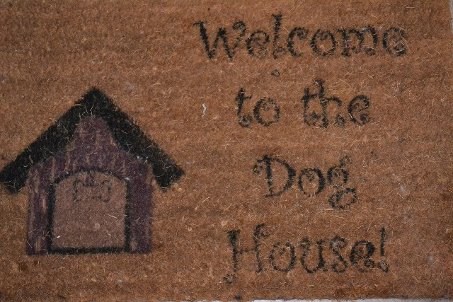 Welcome to the Dog House