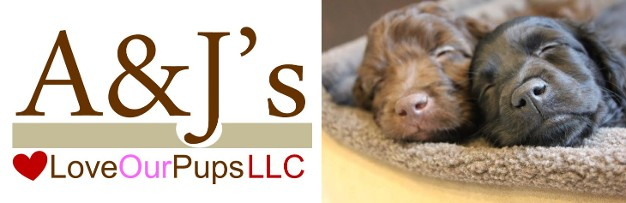 A&J's Love Our Pups, LLC